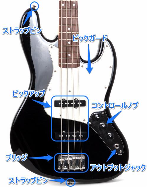 bass_body